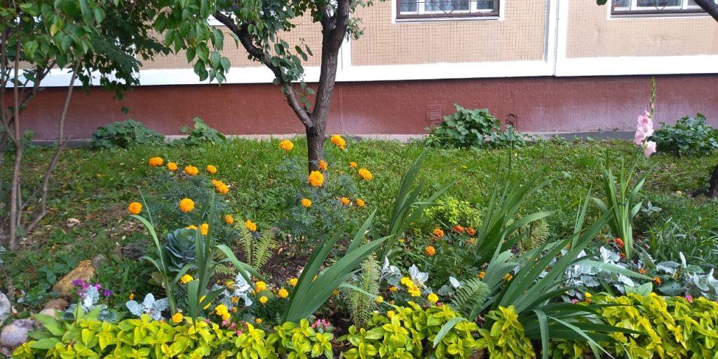По просьбе жителей в палисадник двора на улице Академика Королева завезли землю
