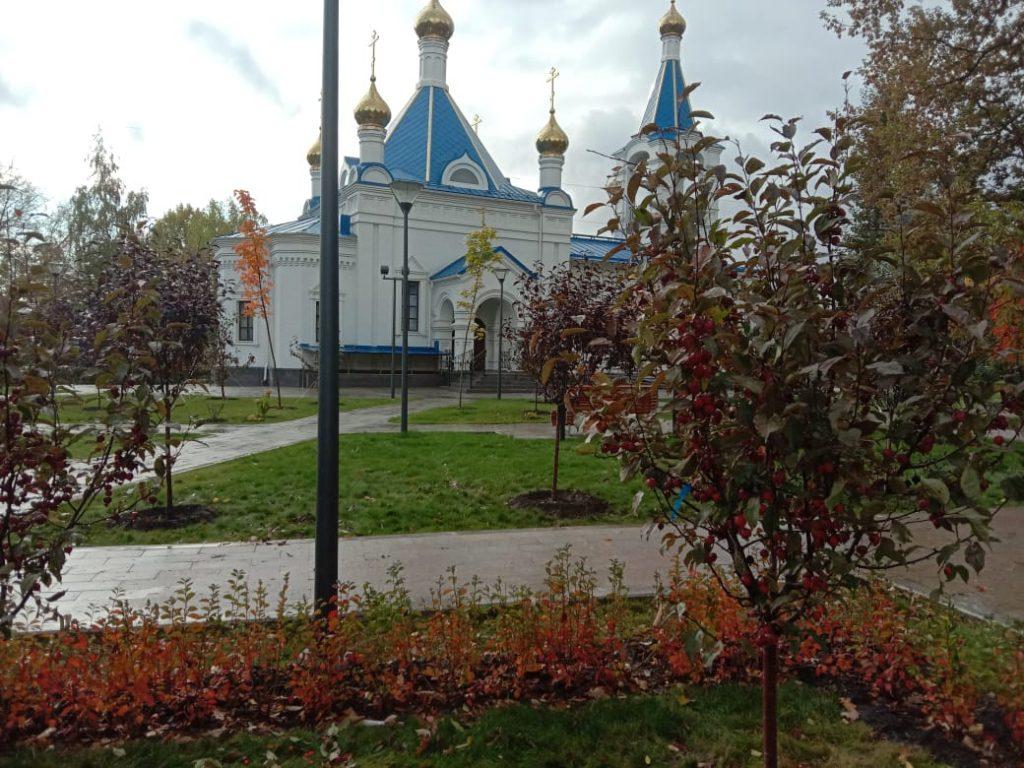 В сквере на Аргуновской высадят деревья и кустарники