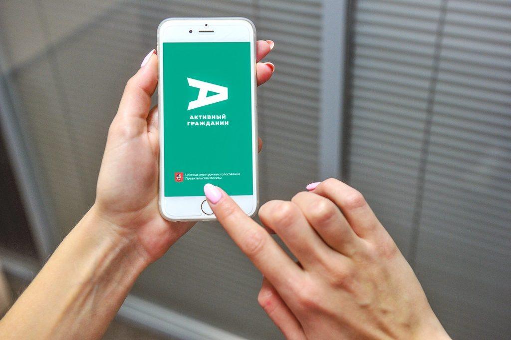 На портале «Активный гражданин» можно проголосовать за новогоднюю программу в трех парках СВАО